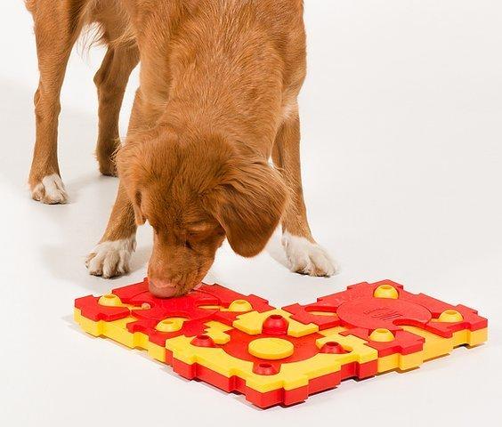 Пазл для собак легкий уровень