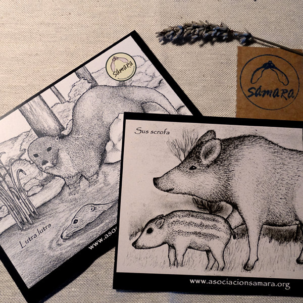Detalle postales