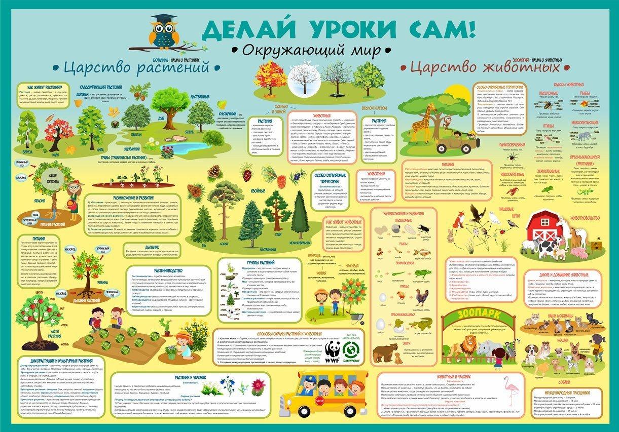 тех, тематические плакаты для начальной школы музей ситца особняке