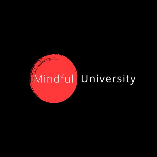 Mindful University Payment Plan 00002