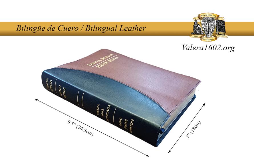 Bilingüe Cuero / Bilingual Leather 00001