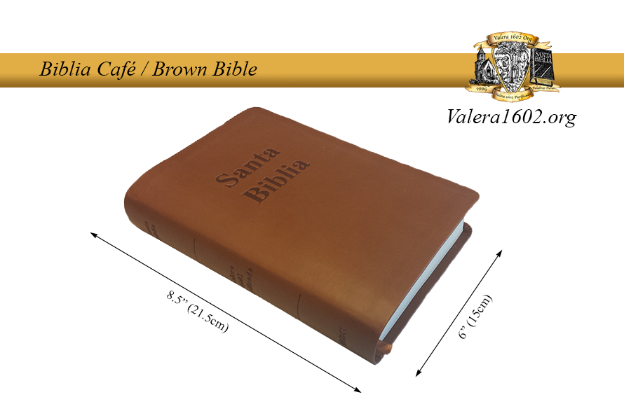 Biblia Café / Brown Bible 6