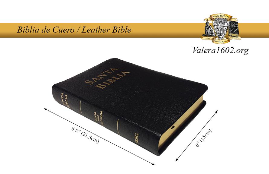 Biblia de Cuero / Leather Bible 5