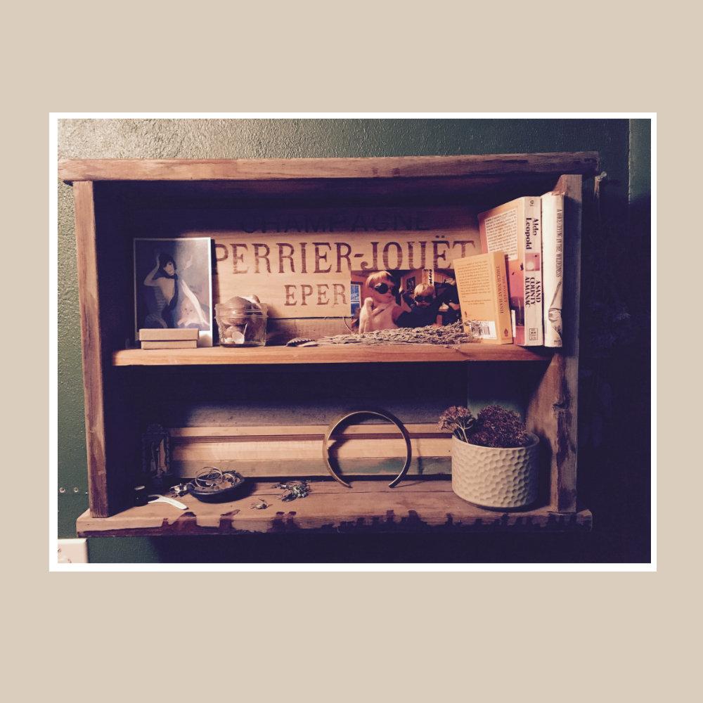 Bookshelf Building, November 19th 00018