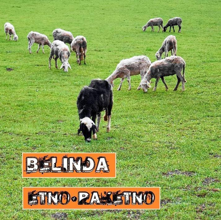Belinda - Etno Raketno 00001