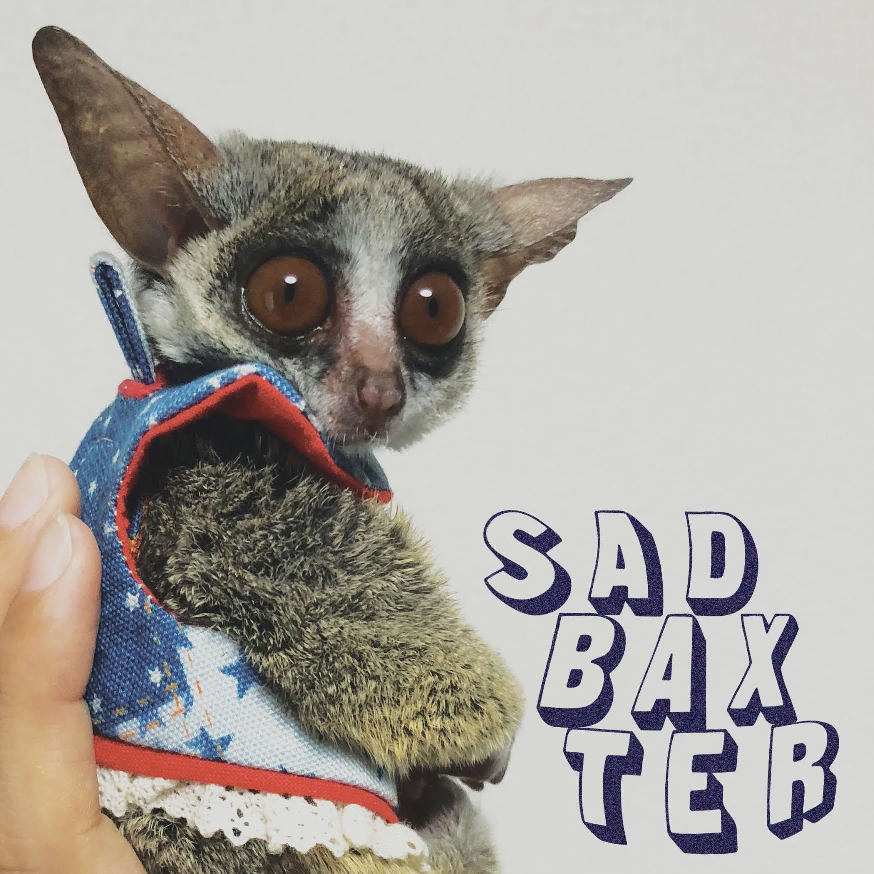 Sad Baxter 7 Inch Vinyl 00011