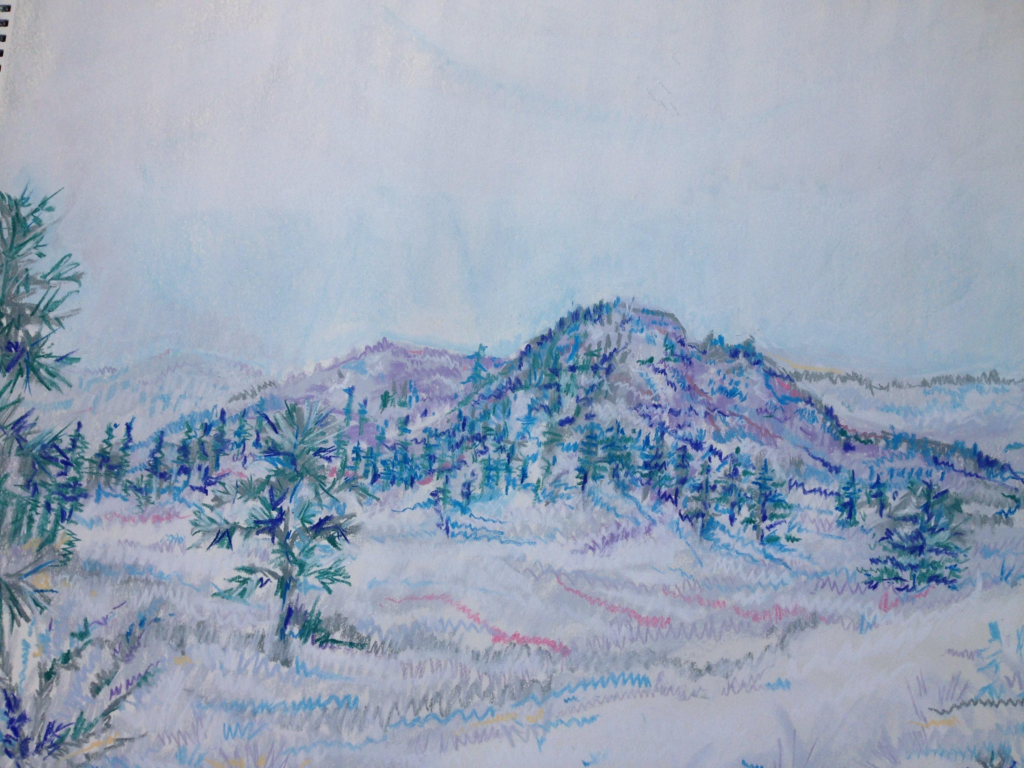 Strawberry Field #9 ART00005