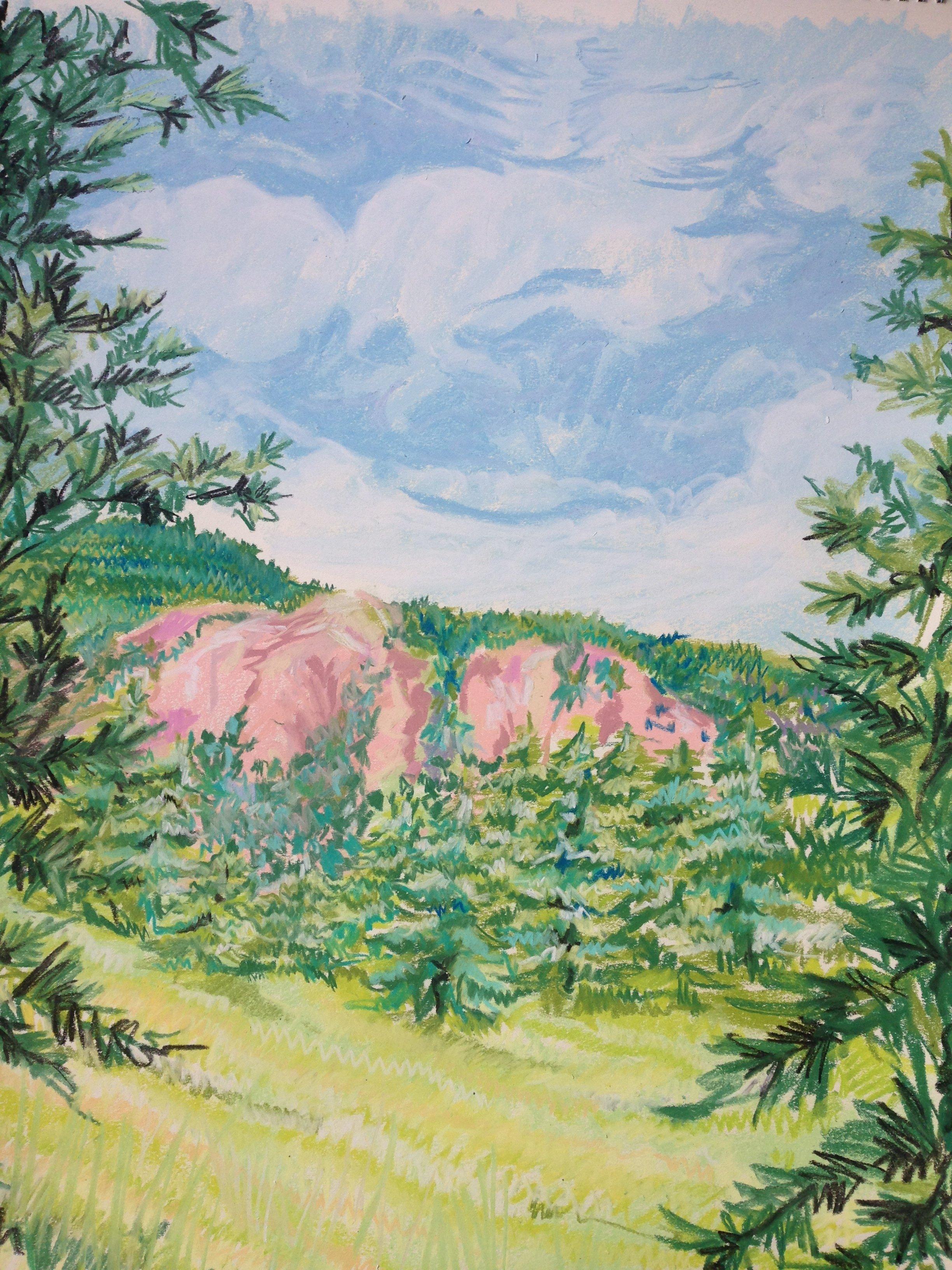 Strawberry Field #25 ART00015