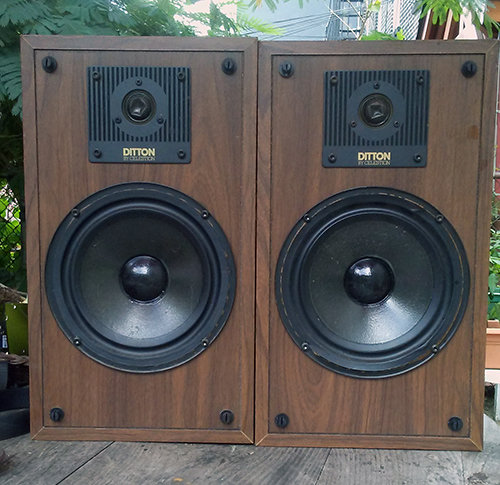 Ditton by Celstion speakers 00004