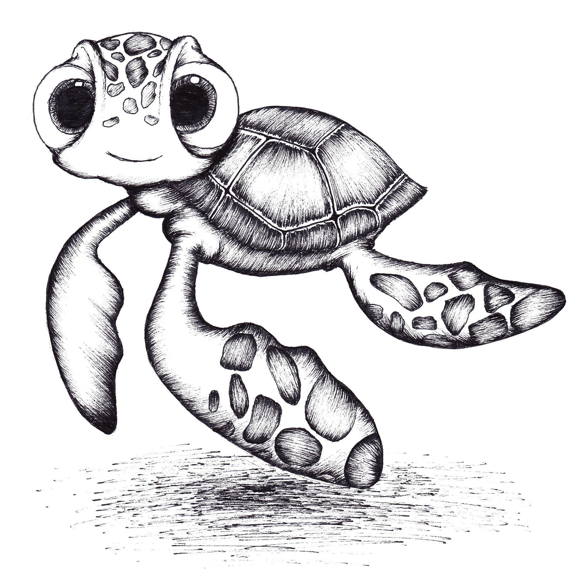 Turtle drawing Draw042