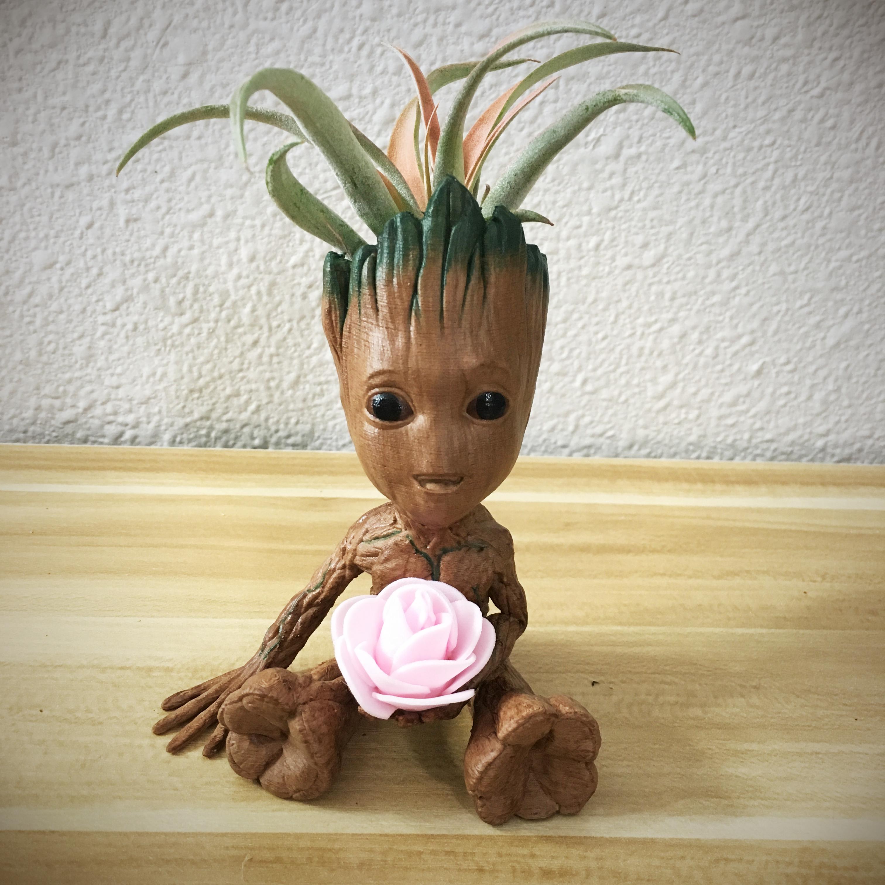 Cute Tree planter w/ flower plant03