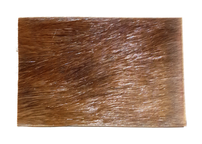 Javanese Deer Skin Amulet