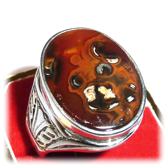 Mystical Agate Gemstone featuring Natural Image of a Bear - comes with Titanium Ring
