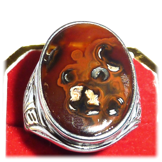 Bear's Face Mustika Gemstone