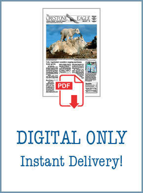 Crestone Eagle News - Annual Digital Subscription AP-DigiSub