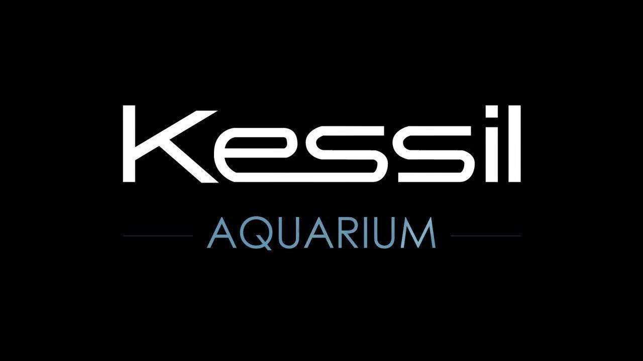Kessil Lighting