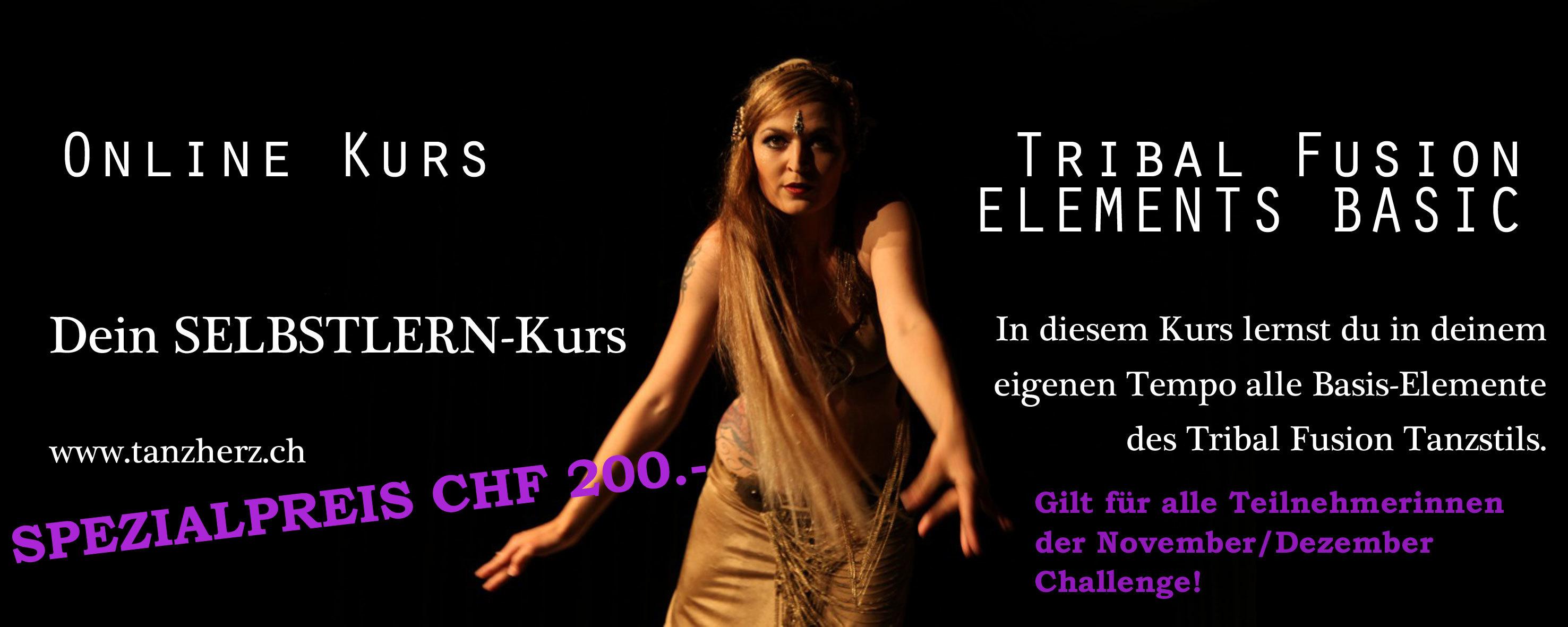 SELBSTLERN-ONLINE-Kurs Tribal Fusion ELEMENTS BASIC Spezial-Preis für Challengerinnen SPEC11NOV