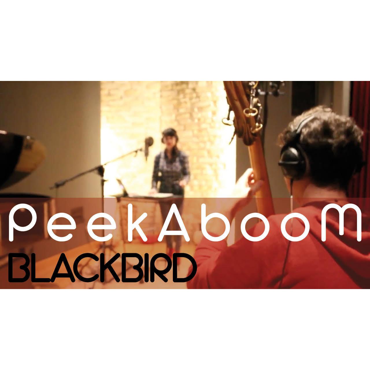 Blackbird - Peekaboom (The Beatles cover - Studio Version) - MP3 Single 00007
