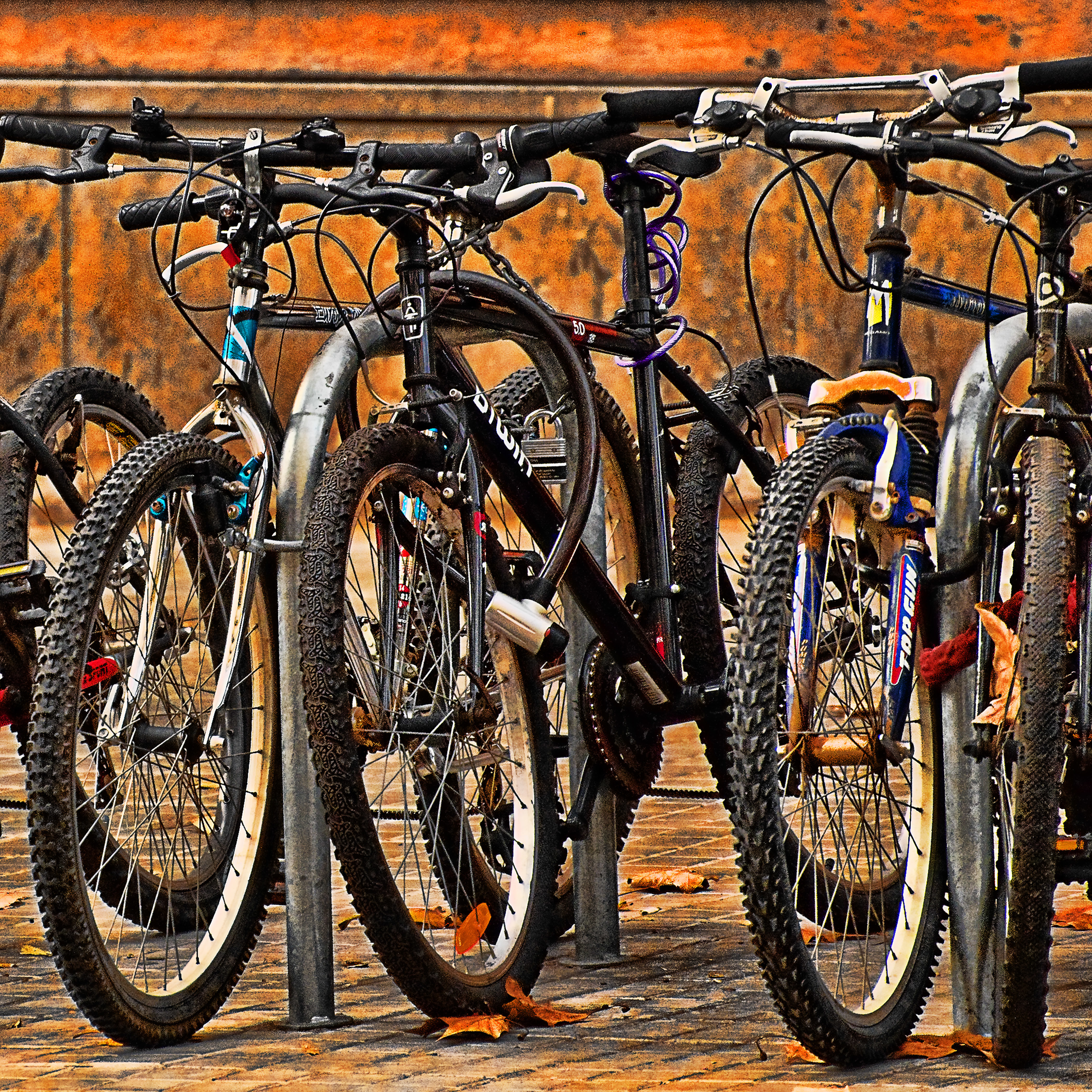 Bike Rack 002-105