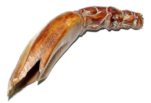 Wild Boarst tusks - Luang Por Phern (Wat Bang Pra)