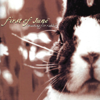 First of June: Waiting For Rabbit (2002) MP3 Download