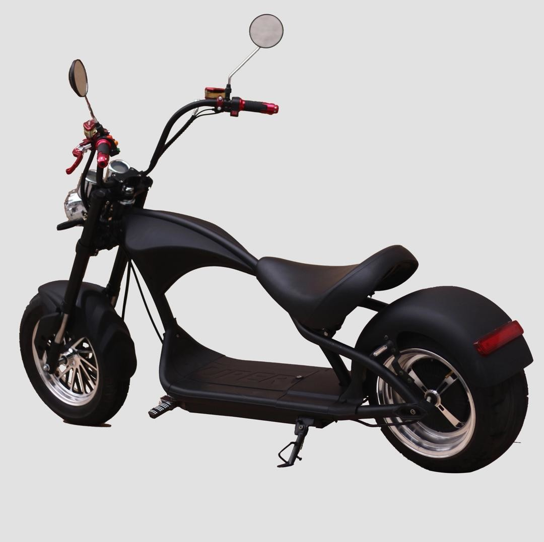 city e scooter 2019 modell x12 ab juli mit coc in deutschland. Black Bedroom Furniture Sets. Home Design Ideas