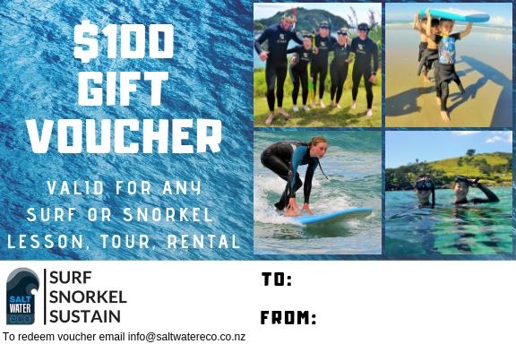 $100 Gift Voucher 00000