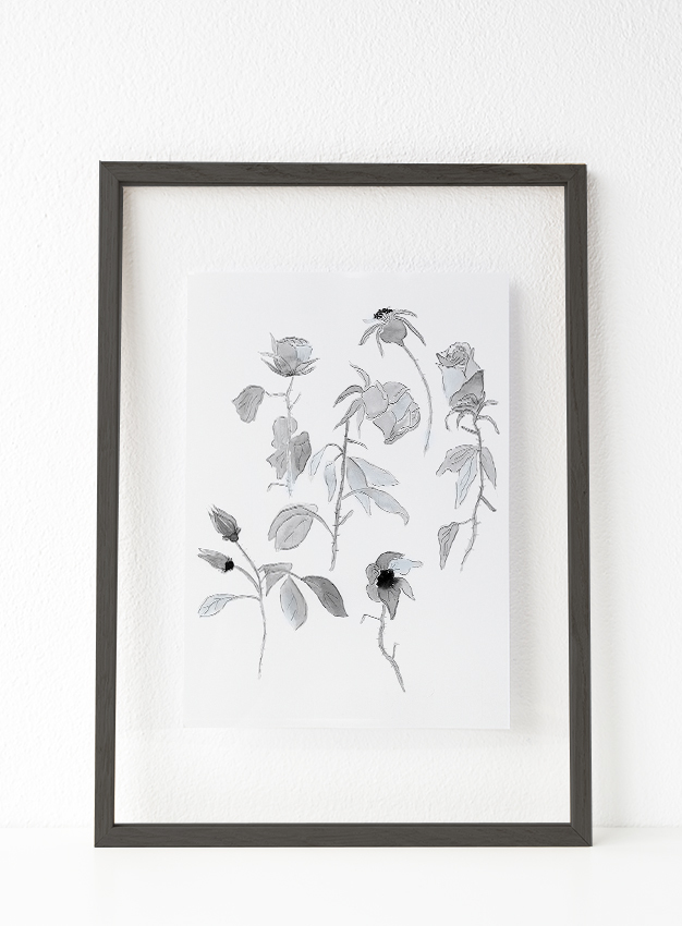Botánica 3 00002