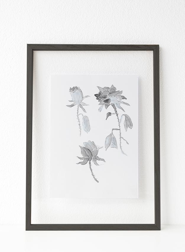 Botánica 4 00003