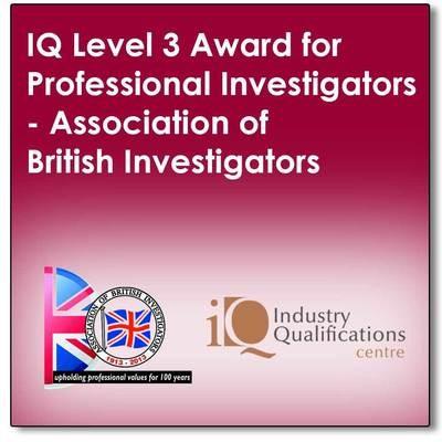 Professional Investigators Manual