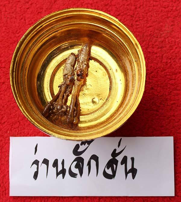 Paya Wan Jakkajan (Cordyceps Cicada)
