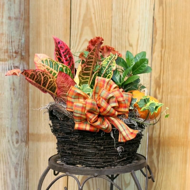 Small Seasonal Arrangement in Decorative Basket