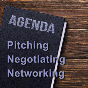 Pitching, Negotiating, & Networking web-pit