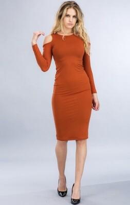 Amber Rose Cut out Dress