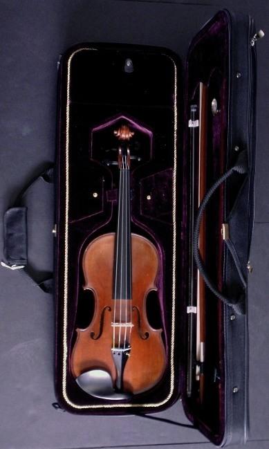 Gliga Vasile Maestro Gama 1 Violin Outfit