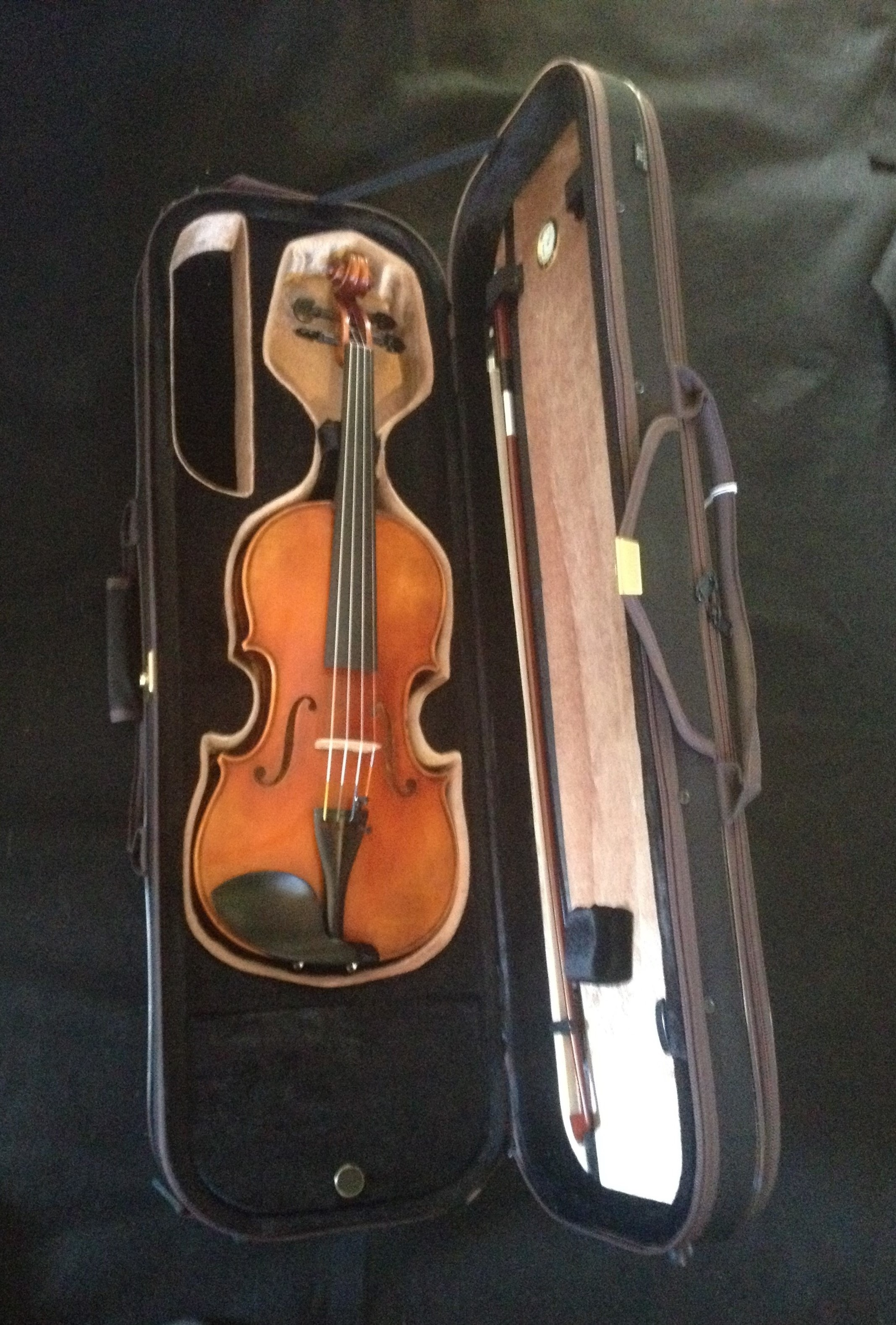 Scott Cao STV 850 Violin Outfit STV850