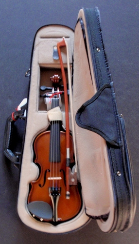 Campus Violin Outfit VN-350