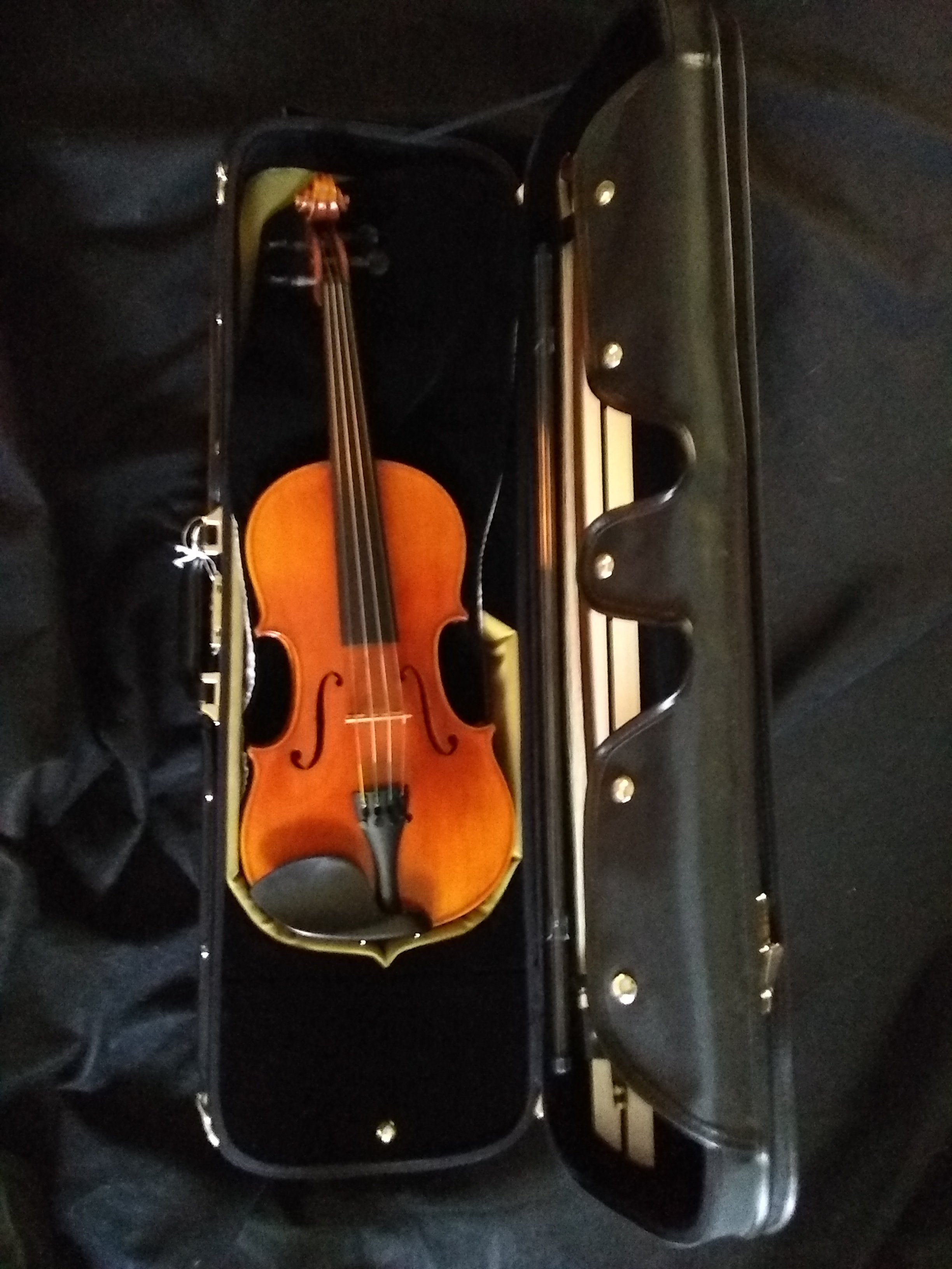 Thankful Strings B50 Violin Outfit