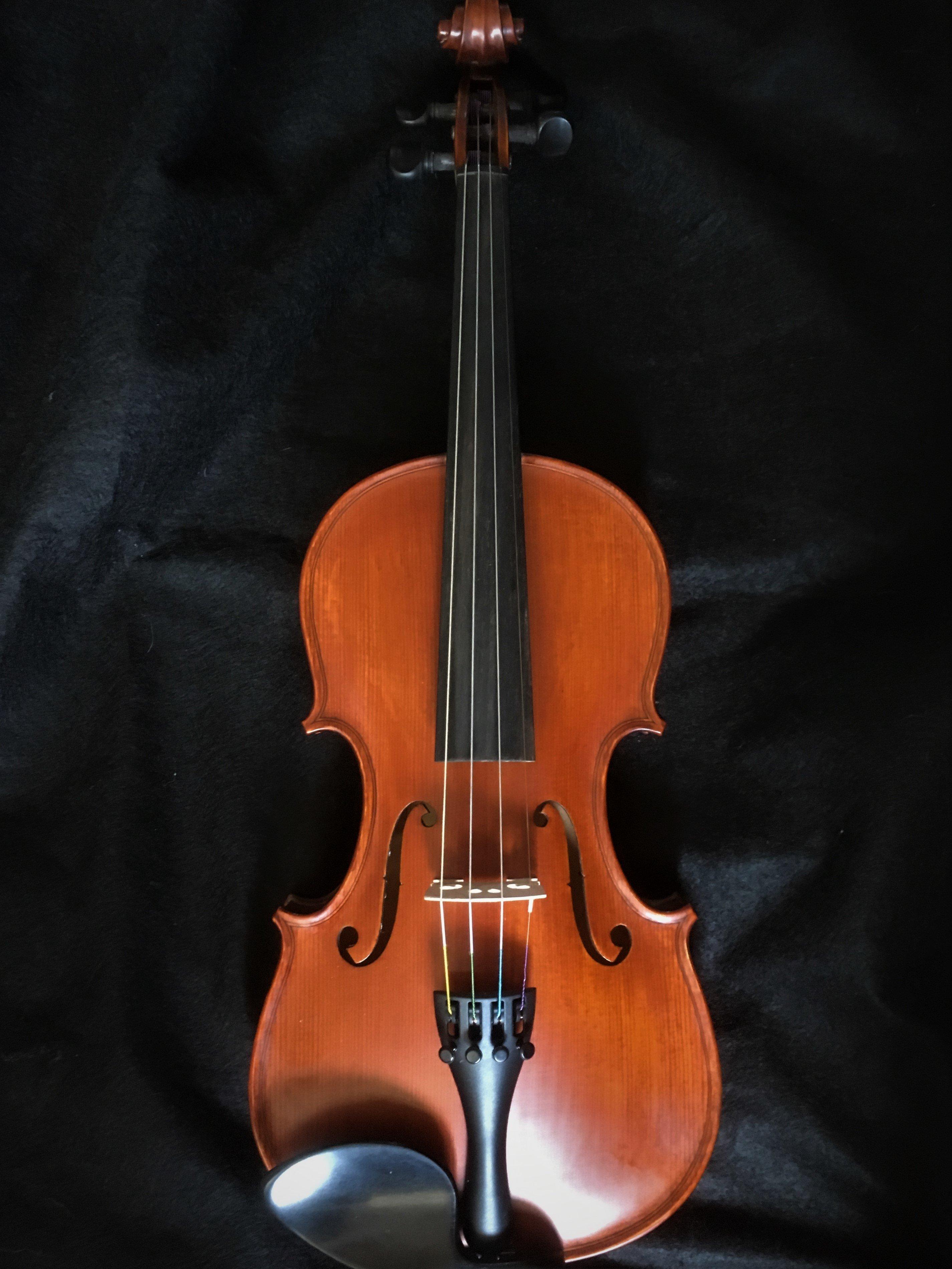 Euro Concert Violin EC 100