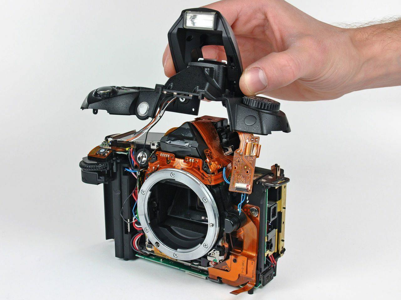 когда родители ремонт фотоаппаратов чита что искусство