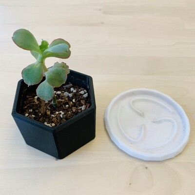 Hector Planter, Black Combo [PICKUP/DELIVERY ONLY]