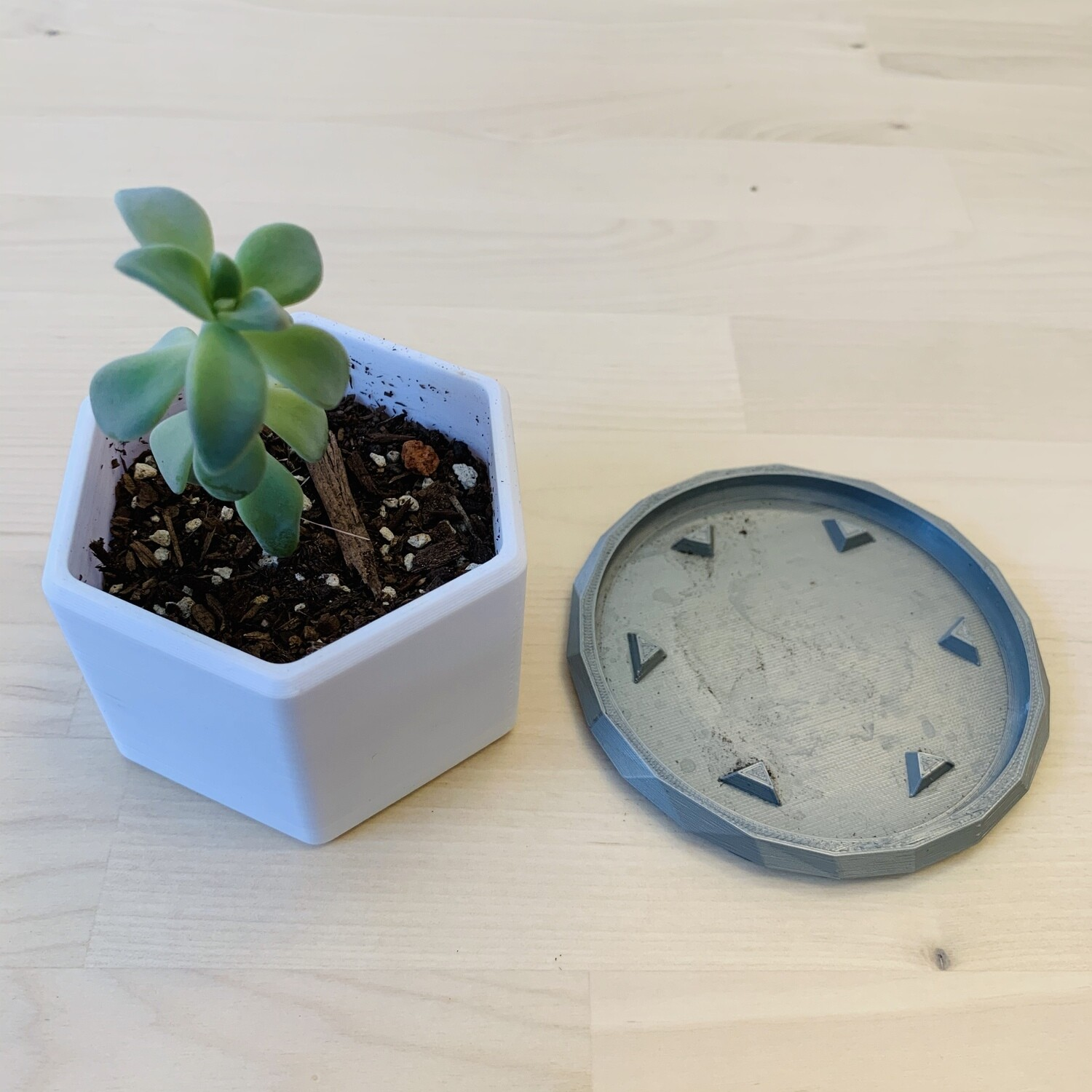 Hector Planter, White Combo [PICKUP/DELIVERY ONLY]