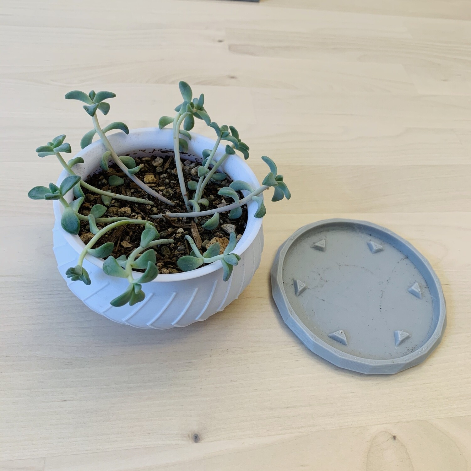 Estella Planter, Small - White Combo [PICKUP/DELIVERY ONLY]