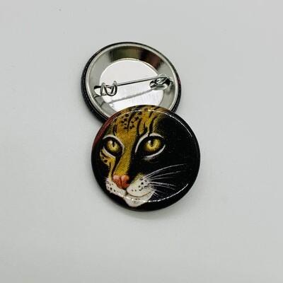 Button, Amazonia (Cat)