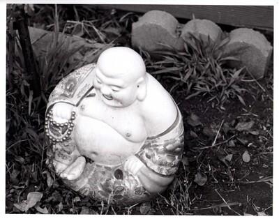 Backyard Buddha, 8.5x11 Print