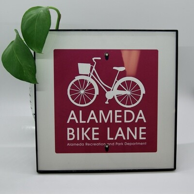 Alameda Bike Lane #01 5x5 Print Framed