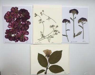 Flower Card (5x7), Set/4 - Variety