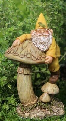 Freddie Gnome