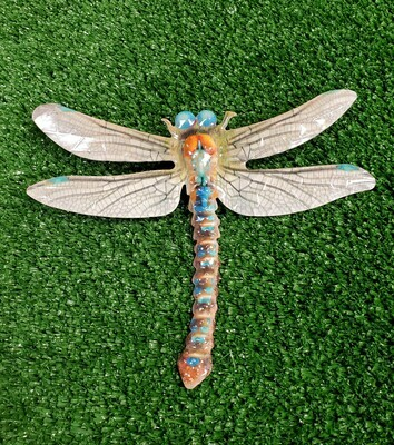 Painted Iron Dragonfly - wall decor