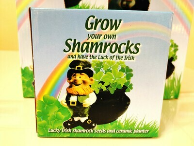 Grow Your Own Shamrock